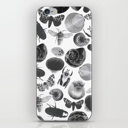 BUGS AND SHELLS iPhone Skin