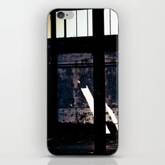 Decline iPhone & iPod Skin