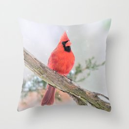 """Say What?"" (Northern Cardinal) Throw Pillow"