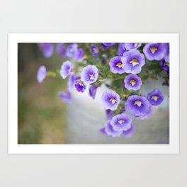 Violets in a Milk Churn Art Print