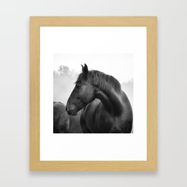 Black & White Horse Photograph ~ Cades Cove Riding Stables Tennessee Framed Art Print