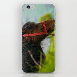 Horse with wild mane iPhone Skin