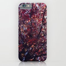 Under the trees - Autumn iPhone 6s Slim Case