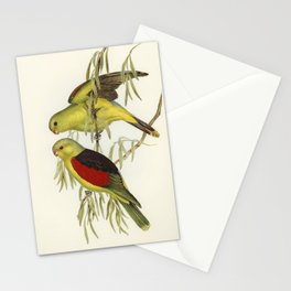 Red-winged Lory (Aprosmictus erythropterus) illustrated by Elizabeth Gould (1804–1841) for John Goul Stationery Cards