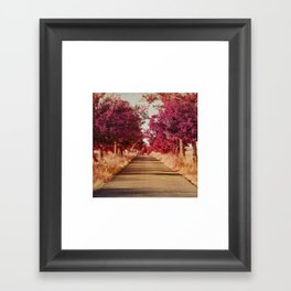 Camino Framed Art Print