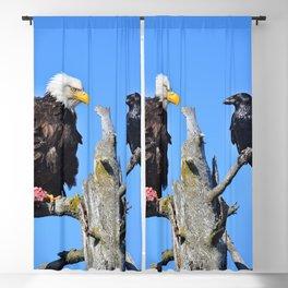 Avian Showdown Blackout Curtain