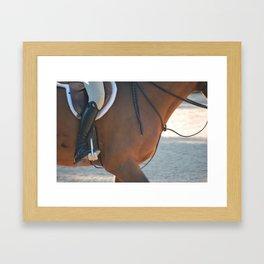Horse Park 172 Framed Art Print