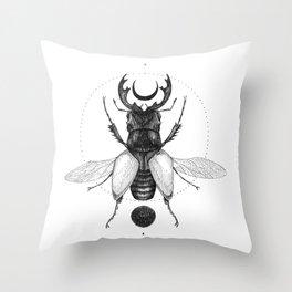 Sun Beetle Throw Pillow
