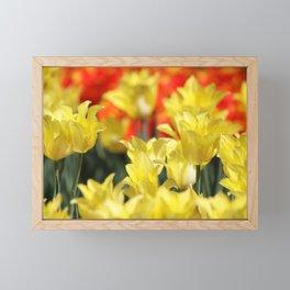 Floral Summer Glow Framed Mini Art Print