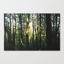 Friston Paradise Canvas Print