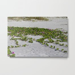 Railroad Vines on Boca VI Metal Print