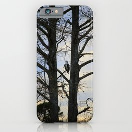 Osprey Perched Between Trees iPhone Case