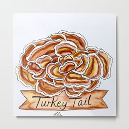 Turkey Tail Metal Print