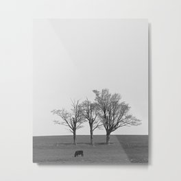 Three Trees and a Bull Metal Print