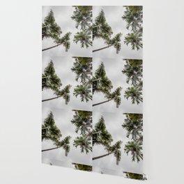 Tropical Delight Wallpaper