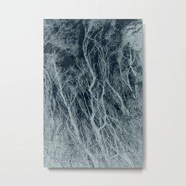 entranced Metal Print