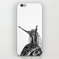 snail iPhone & iPod Skins featuring Snail by Laura Chico