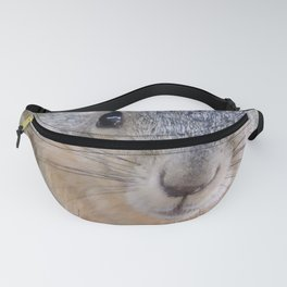 Who You Lookin' At? Fanny Pack