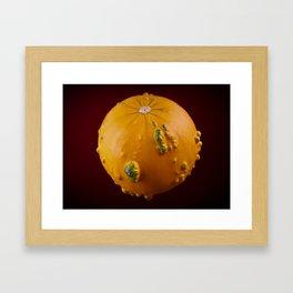 Decorative pumpkin - With red background Framed Art Print