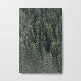 Filled With Evergreen Metal Print