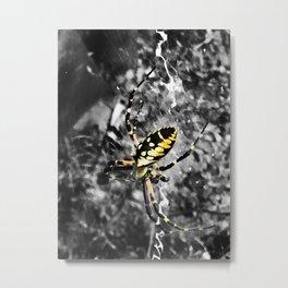Banana Spider Metal Print