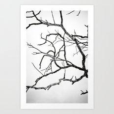 Broken sky Art Print