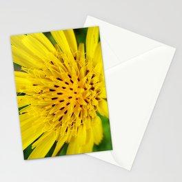 Salsify Flower Stationery Cards
