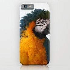 Blue-and-yellow macaw iPhone 6s Slim Case