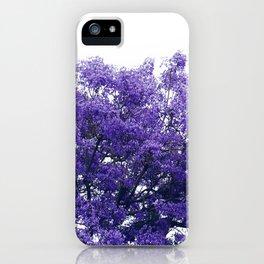 Purple Jacaranda II iPhone Case