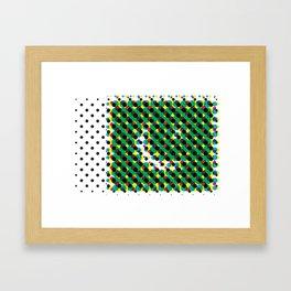 Pakistan Framed Art Print