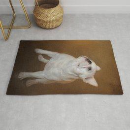 Little Beggar - White French Bulldog Rug