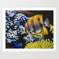 Copperband Butterflyfish Art Print