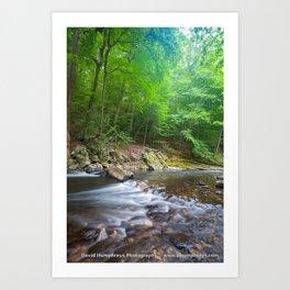 Wissahickon Creek Art Print