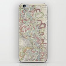 Beautiful Map of the Lower Mississippi River iPhone Skin