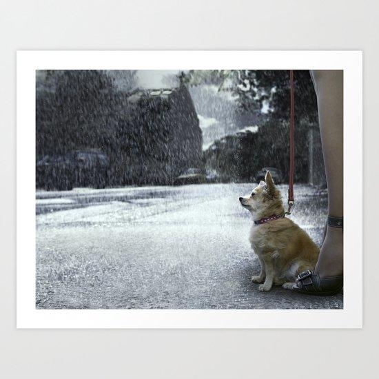 The dry dog Art Print