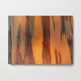 Eucalyptus Texture 1 Metal Print