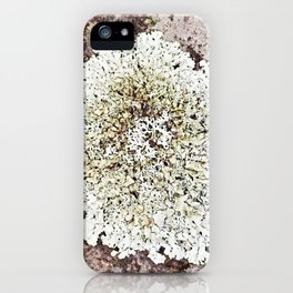 Lichen, moss and granite iPhone Case