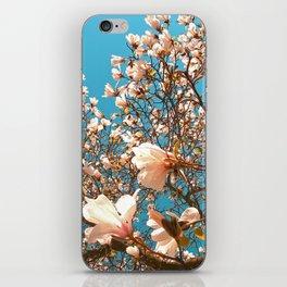 magnolia tree II iPhone Skin