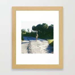 No Hurry In Africa Framed Art Print