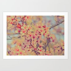 Vintage Blossoms - In Memory of Mackenzie Art Print