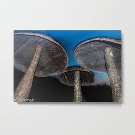 Mushrooms at Griffis Sculpture Park  Metal Print