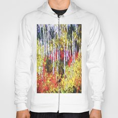 Title: Glorious Colors - digital Silk Screen Hoody