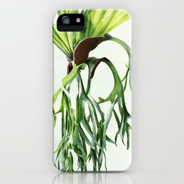 Staghorn iPhone Case