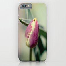 the beauty of nature Slim Case iPhone 6s
