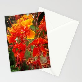 Fire Scale Stationery Cards