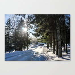 Snow Is Here Canvas Print