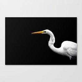 Heron#1 Canvas Print