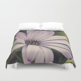 Soft African Daisy, Nature Photography, Flower Print, Floral Print, African Daisy Duvet Cover