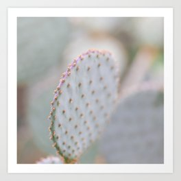 Cactus Pastels Art Print