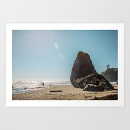 Seal Rock Art Print
